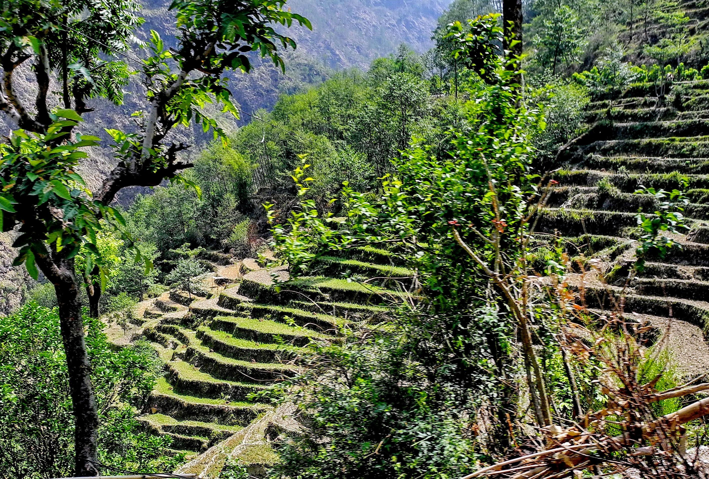 Kodari Nepal